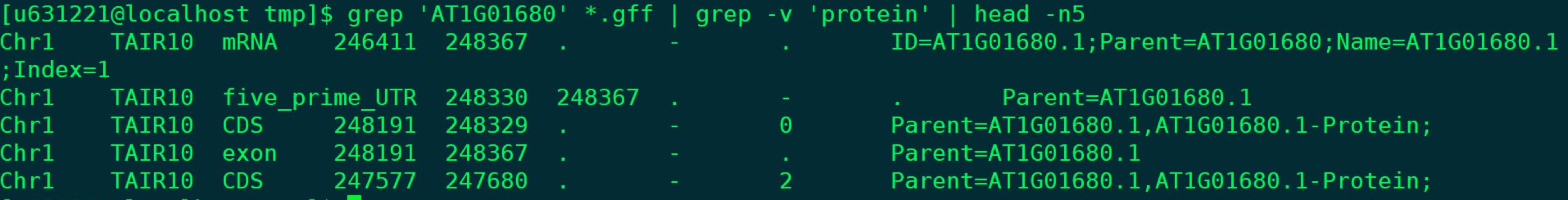 grep_2