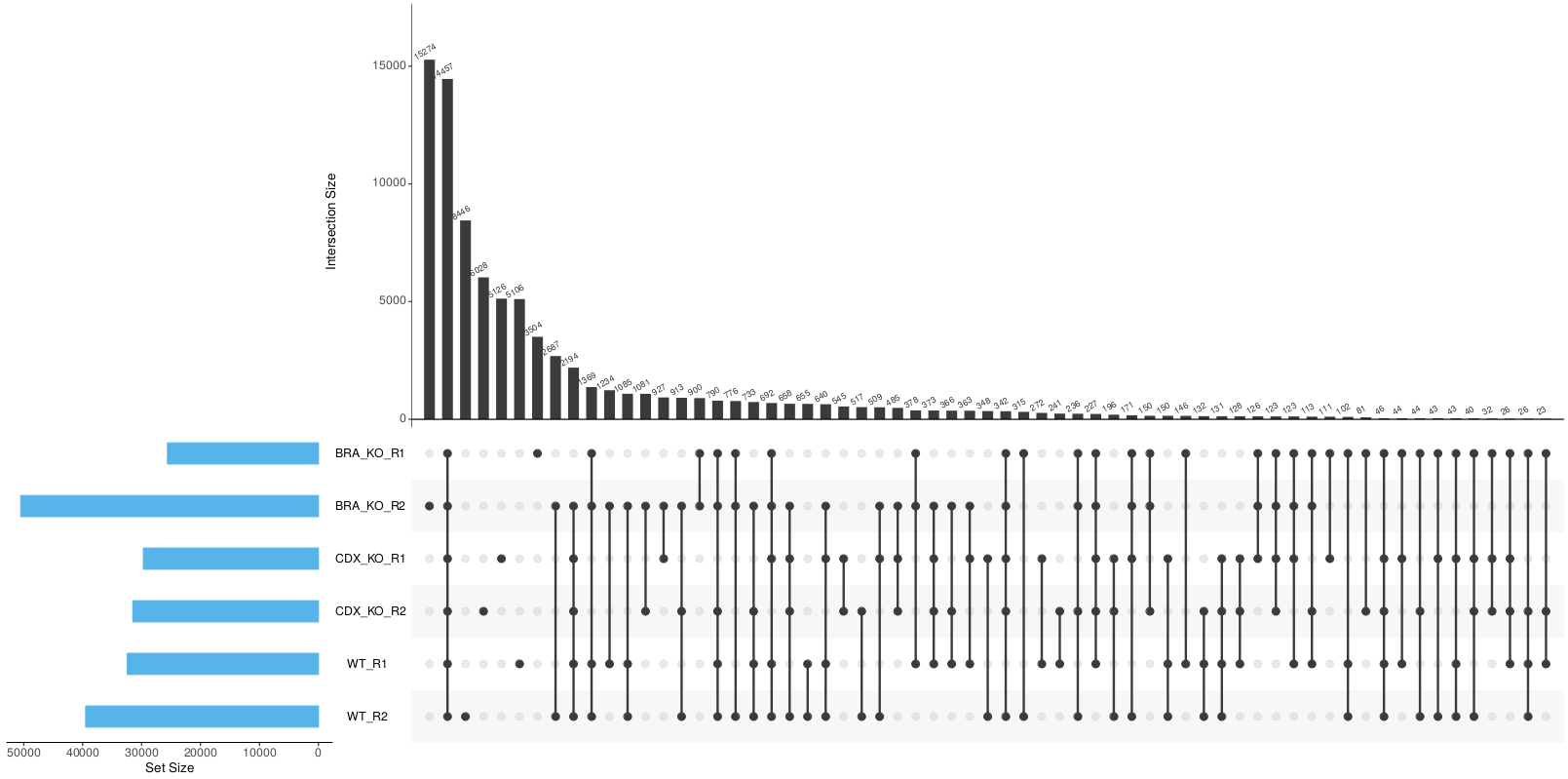 r_upsetr_intersect_plot